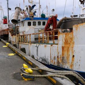 JLN-bateau-2541-islande