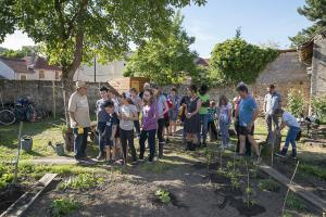 jardin-jeune-pousse-6-17-5154