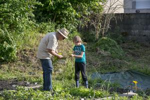 jardin-jeune-pousse-6-17-5216